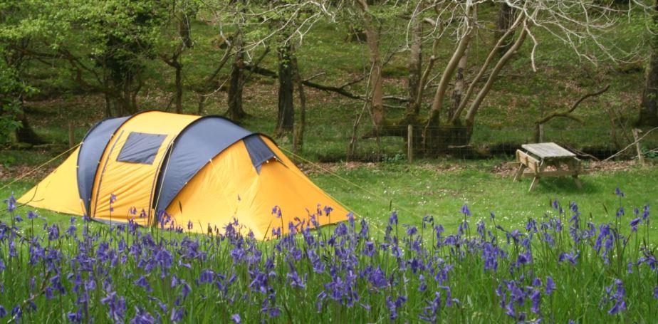 Hammocks vs. Tents